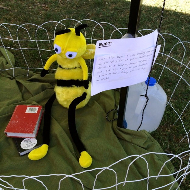 Burt-Bee