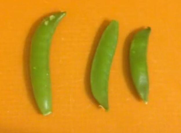 Peas01